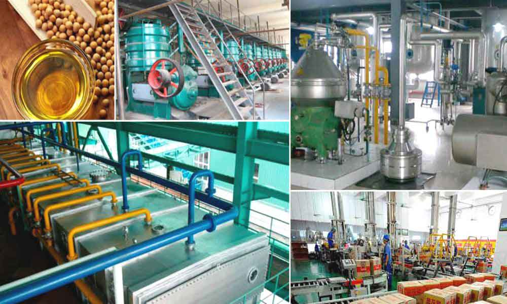 soybean oil processing plant project report,Detailed Project